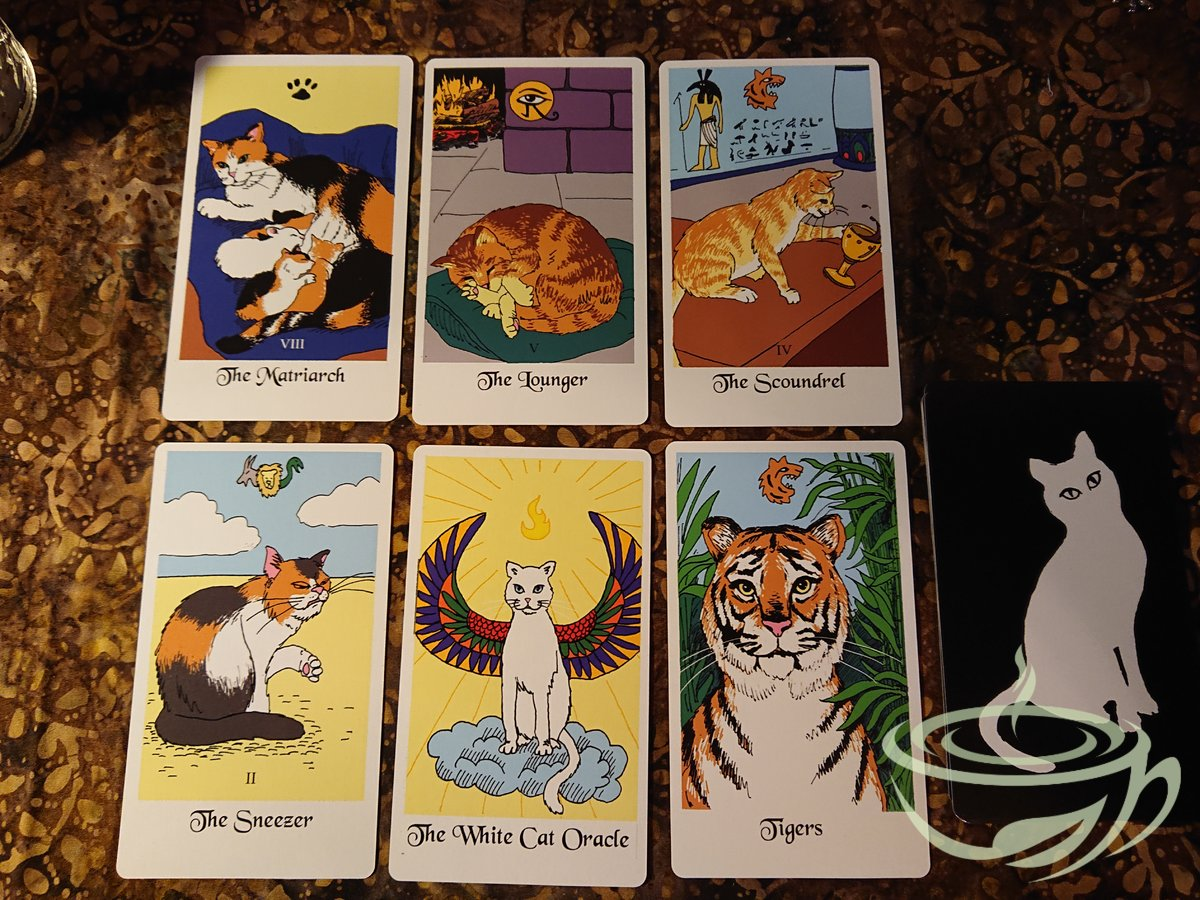 The White Cat Oracle