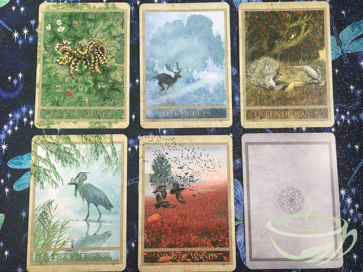 Anieth Nature Tarot