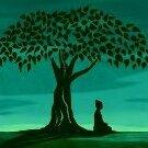 Bodhiseed